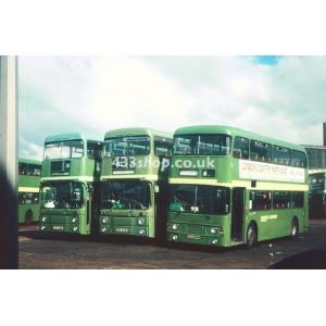 LCNE AN321 & AN31 at Hatfield