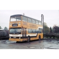 Stevensons 46 (LT DMS1303)