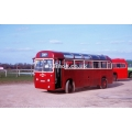 Hampsons LUC 213 (London Transport RF13) (preserved) at Esher