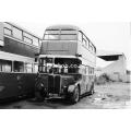 Bedlington & District NLP 585 at Ashington