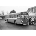 LT SMS63 at Golders Green
