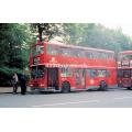 London Buses L341 & T323 at Mornington Crescent