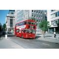 London Buses M1145 at Bloomsbury