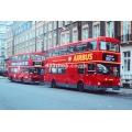 London Buses M43 & M926 at Bloomsbury
