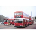 London Buses M643 & LS384 at Highgate