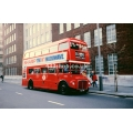 London Buses RM800 at Bloomsbury