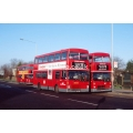 London Buses M80 & M587 at Enfield
