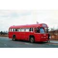 London Transport RF390 at Palmers Green