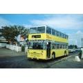 Capital Citybus 902 at Dagenham
