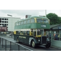 Green Bus 12