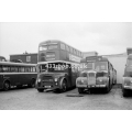 Road Services 29 (Aldershot & District 282) & 81 (Bournemouth 160) at Douglas
