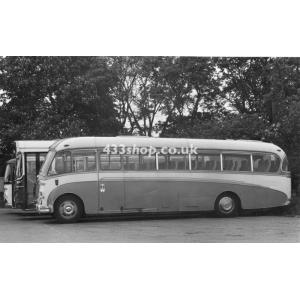 Amos Bedford coach