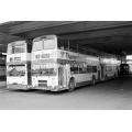 Thamesdown 66 & 130 at Swindon