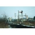 Hertford East SB (signals)